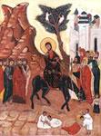 Liturgia delle Palme